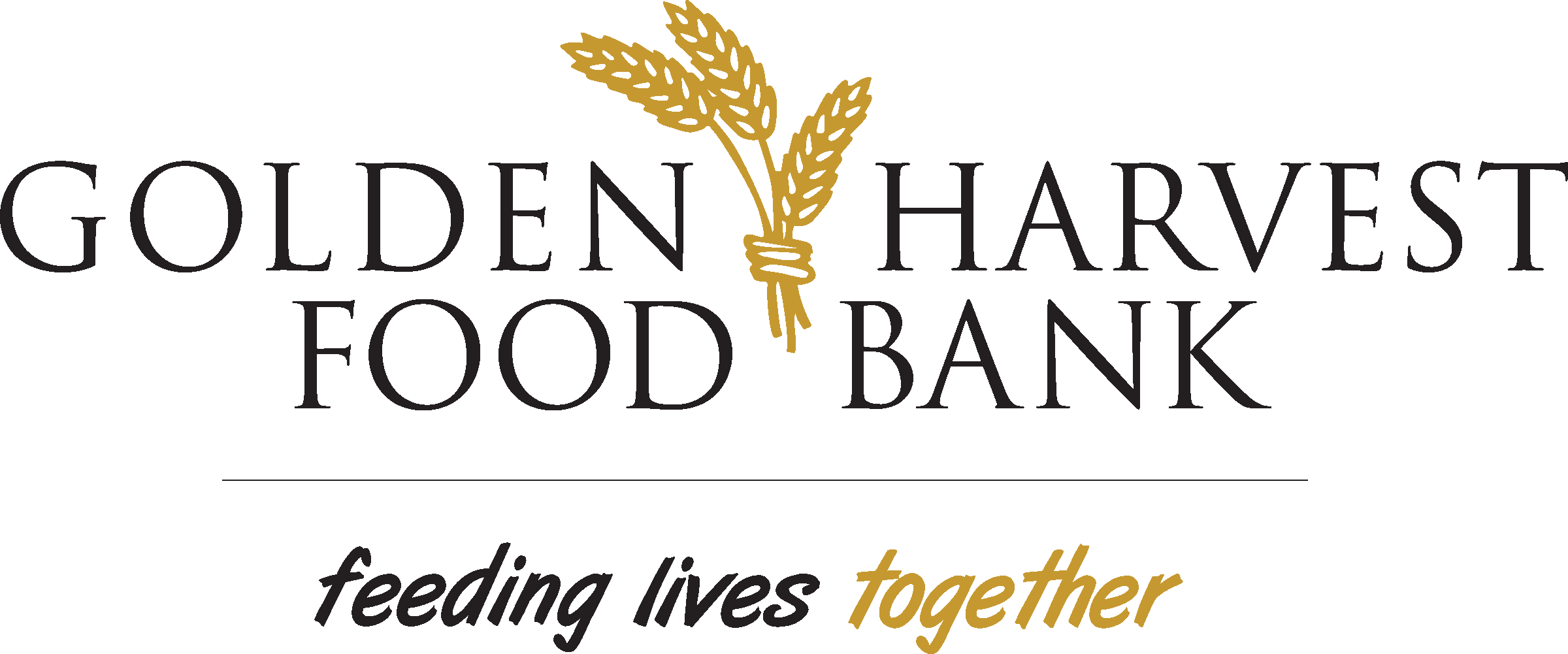 Feed America Logo